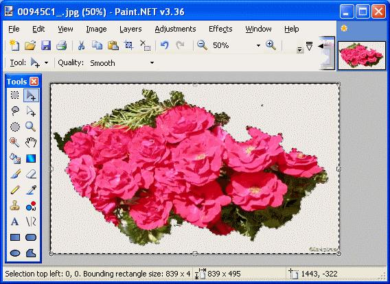 .net paint slepa mapa